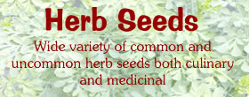 organic herb seeds for sale
